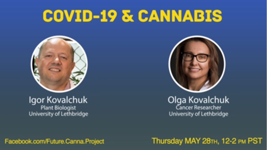 Covid-19 & Cannabis Research